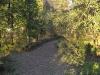 Twain Harte Trail