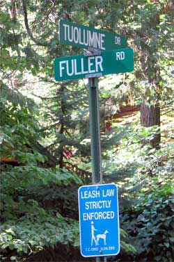 Fuller Road Construction